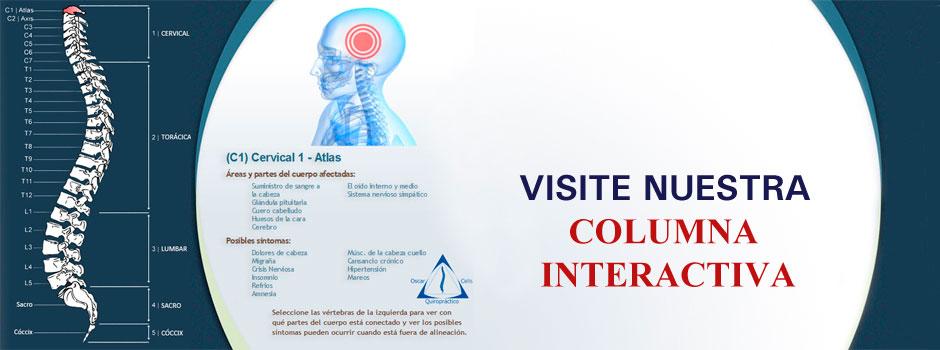 Visite-columna-interactiva3